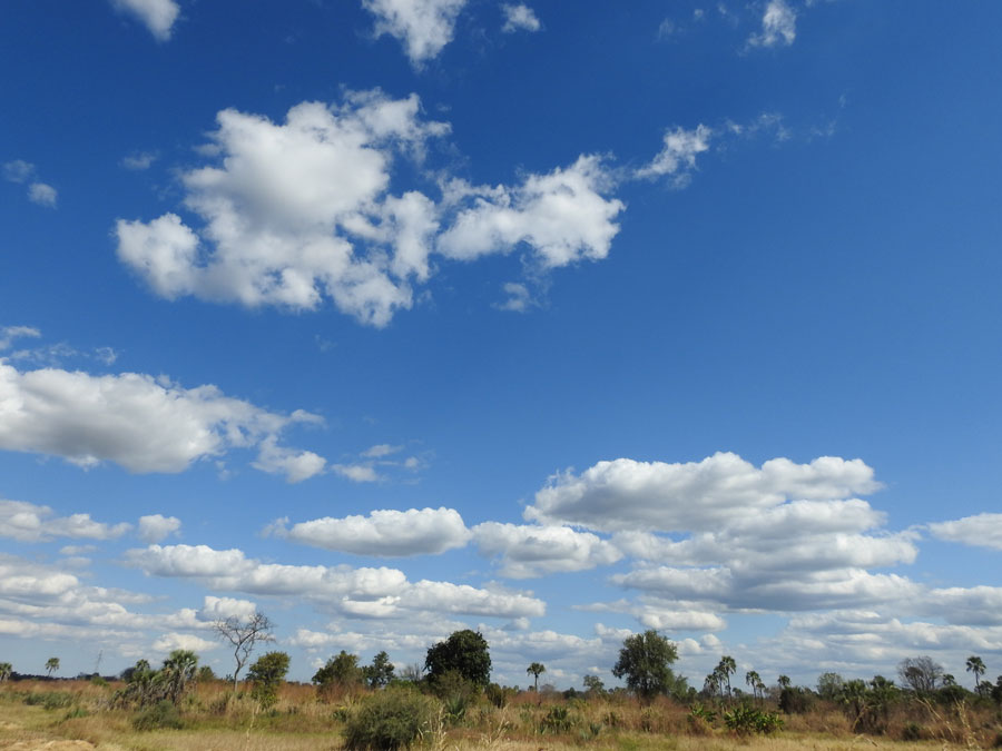08_アフリカ的風景
