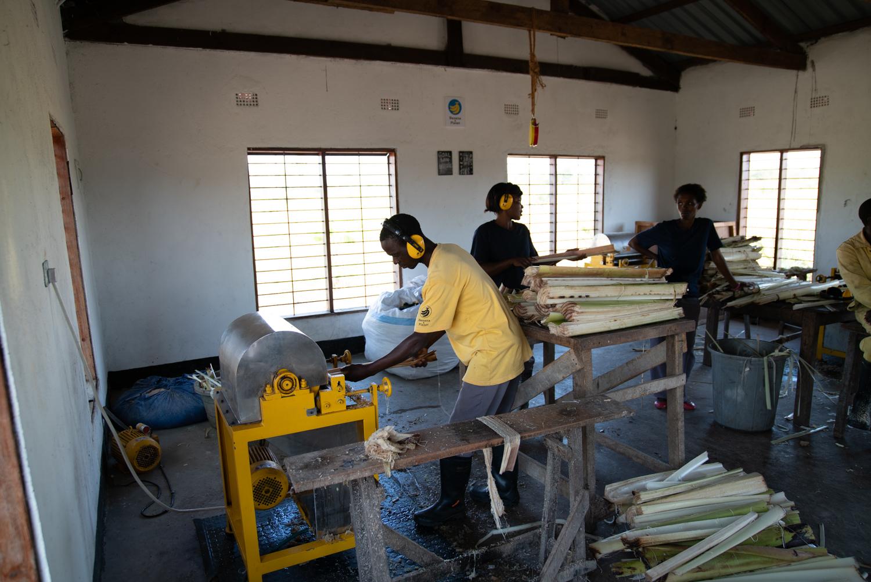 バナナ工場1